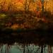October! / Octobre! - by Denis Collette...!!!