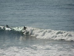 Riding one (easywriterguy) Tags: sanfrancisco surfer surfing oceanbeach surfers