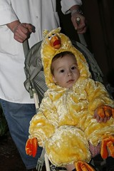Nathan the chicken