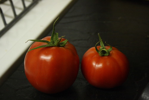 first tomatoes 027