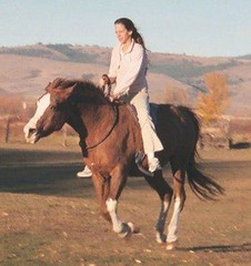 bareback riding (ride free) Tags: horses horse ride walk riding arabian lope rider gdansk trot horsebackriding canter equine gallop barebackriding arabianmare freerider chesnutarabian gdanskmare