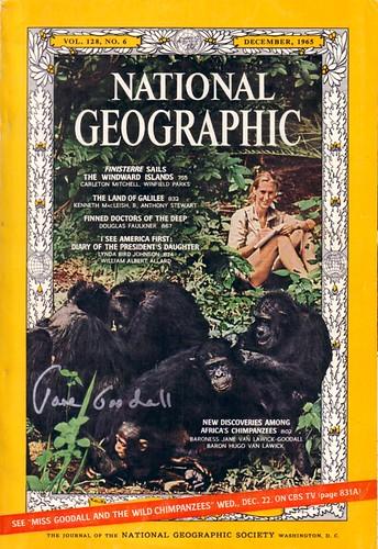 Jane Goodall Autograph 2