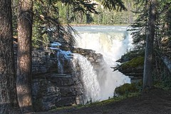 Sunwapta Falls - Jasper Alberta (Marley Aubin) Tags: waterfall sunwapta jasper alberta