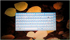 Use screen keyboard (Hamid M.) Tags: yahoo google internet mazandaran worry secure msn esfahan aol gilan ahvaz tabriz ardebil mashad    internetiniran flickriniran