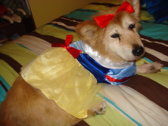 Babs as Snow White!