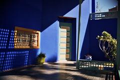 Jardin Majorelle, Marrakech (Alan Hilditch) Tags: garden jardin morocco marrakech majorelle marrakesh marruecos marokko marrocos moroc  almarib