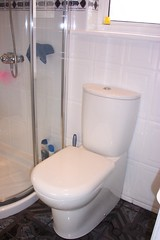 Bathroom remdel : the new toilet
