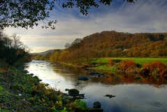 River Taff In November