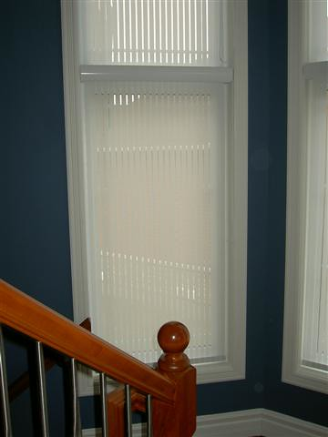 Filtered privacy with roller shades