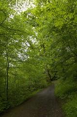 Buxton 26-5-06 (83) (rs1979) Tags: buxton derbyshire peakdistrict