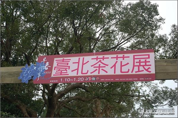 DSC_7108台北茶花展