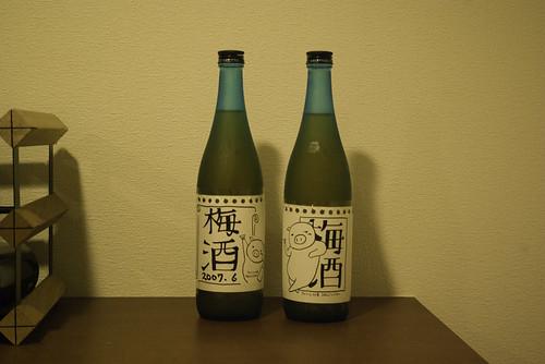 梅酒1173