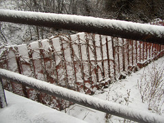 20070108-03 (Canadian Mark) Tags: winter snow fence saultstemarie