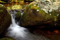 peacefull (Websphotos) Tags: longexposure reflection water waterfall moss shenandoah oldragmountain oldrag naturesfinest appalachain