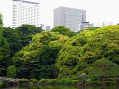 Shinjuku Gyoen, Tokyo (Dan_DC) Tags: japan garden tokyo japanesegarden pond scenic shinjukugyoen urbanpark