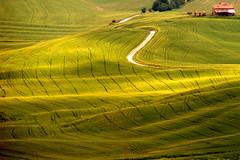 Green quilt - coperta verde (raffaphoto©) Tags: italy green landscape spring country soe naturesfinest nture abigfave anawesomeshot diamondclassphotographer flickrdiamond goldstaraward