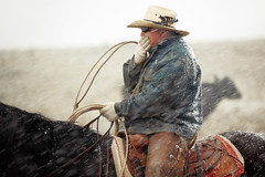 Cold Cowboy (www.toddklassy.com) Tags: ranch travel winter horse snow man motion cold west tourism hat weather leather horizontal rural season outdoors countryside spring cowboy montana mt unitedstates cattle action cleveland country working documentary rope riding elements catching western snowing strength agriculture chinook rancher manworking calf frigid cowboyhat herd wildwest chaps horseback stallion saddle horsebackriding denimjacket equine corral roundup traditionalculture caucasian lasso occupation oneman herding reins ranchlife americanquarterhorse groupofanimals colorimage coveringmouth ruralscene beautyinnature americanculture blainecounty westerncowboys realcowboy cowboyonhorse montanaphotography toddklassy