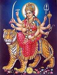 bhagawati_PZ44