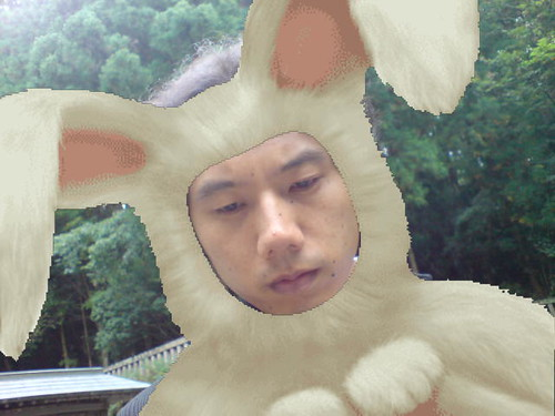 Ryo the rabbit