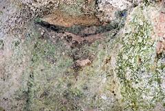Cuevas del Conventico, Melilla la Vieja 086