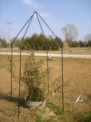 repurposing tent poles