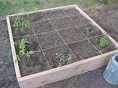 Square Foot Gardening Box
