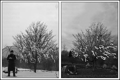 Me....  And The Giving Tree (Culture:Subculture) Tags: winter portrait blackandwhite usa selfportrait snow tree love blancoynegro nature fashion photography hope md diptych artist peace noiretblanc neworleans fineart scenic documentary bodylanguage style columbia attitude mysterious reflective spirituality forsaken somber pretoebranco centennialpark contemplation sincere columbiamd lifeasart neroebianco noapologies craigmorse culturesubculture culturesubcultureyahoocom wwwculturesubculturecom hopeandhealing zwarteenwit theinimitableunderground musiciansperformersartists 2007craigmorse wwwflickrcomphotosculturesubculturecollections schwarzesundwei