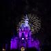 Wishes Fireworks Show - Walt Disney World