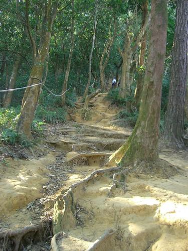 Fei Feng Mountain Hiking Trail
