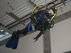Scuba Ceiling Guy (joelaz) Tags: aquarium monterey acquarium