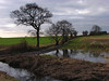 After the rain (Mr Grimesdale) Tags: rain flood sony knowsley merseyside kirkby melling mrgrimsdale stevewallace dsch2 mrgrimesdale grimesdale