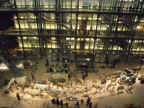 Plan Museum D'histoire Naturelle Paris Museum D'histoire Naturelle