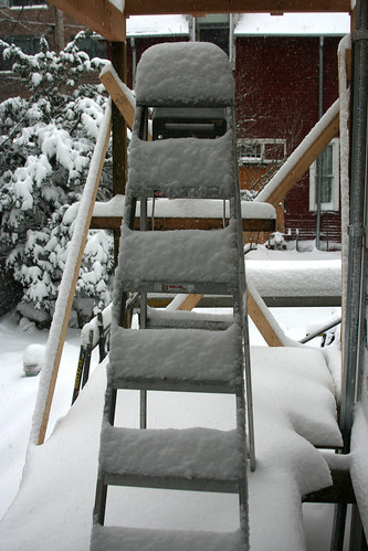 Snow and Ladder