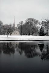 Snow Series 15 (lkgilbert) Tags: lkg