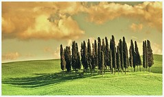 Paesaggio della Toscana......... (Tiziano Taddei) Tags: italy panorama primavera landscape nuvole natura tuscany landschaft paesaggi atmosfera soe paesaggio fotografo fotoclub sfumature supershot passionphotography httpwwwflickrcomgroupsbigfave diamondclassphotographer theunforgettablepictures shieldofecellence betterthangood theperfectphotographer httpwwwflickrcomgroupstheperfectphotographers goldstaraward httpwwwflickrcomgroupsrosacelo httpwwwsdresslerdeflickr httpwwwflickrcomgroups508802n20 spainitalyes updatecollection ucreleased