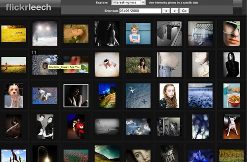 Flickr Leech beta is live! (by AndrewNg.com)
