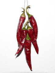 red hot chili pepper (Sercan nal) Tags: red hot pepper chili aci biber peperoni kirmizi scharfe sercannal