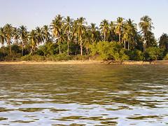 Navegando por la baha (hurtadoc777) Tags: elsalvador jiquilisco usulutan imagesofelsalvador elpulgarcitodeamerica appenninosettentrionalealpinatura