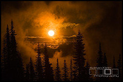 Above The Clouds (Adrian Klein) Tags: above orange sun mountain art sunrise canon washington amazing klein northwest hiking surreal award mystical adrian treeline sthelens winning wolfe icpa