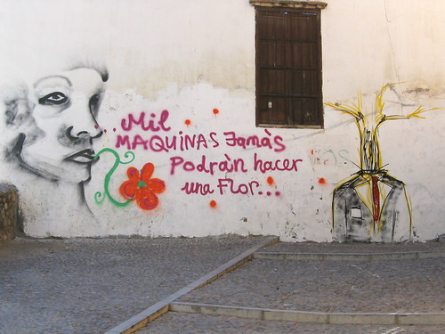 "graffiti of a face in profile over a flower, next to the words, ""mil maquinas jamais podran hacker una flor"""