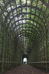 green tunnel 1