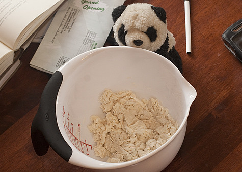 Panda with Stiff Starter