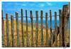 Valla - Fence (EddyB) Tags: france fence nikon europa europe d70s francia valla excellence yougotit pointeduraz eddyb plus4 frenchbrittany bretañafrancesa plus4excellence ltytr1 invitedphotosonlyplus4 allnicethink edyyb