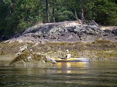 IMGP1111 (spuzzum42) Tags: kayak victoria kayaking brentwoodbay todinlet