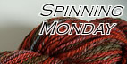 SpinningMonday6