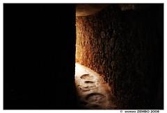 despues de la oscuridad... (fotolobo) Tags: brazil paqueta h2 tunel cavern couve cueva caverna sonyh2 fotolobo ilhapaquetá
