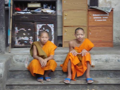 mini monjes