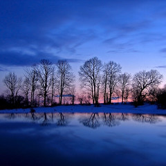Winter Twilight Trees (Kirpernicus) Tags: longexposure blue trees winter sky cold color reflection nature colors beautiful car silhouette clouds automobile colorful vermont natural violet squareformat blueribbonwinner mywinners abigfave anawesomeshot impressedbeauty superbmasterpiece treesubject diamondclassphotographer flickrdiamond megashot bloggedbyabigfave nocturnalmasterpiece eliteimages thesecretlifeoftrees