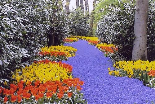jardines del Keukenhof