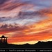 Mongolia - Silhuette of Ongiin Khiid monastery during Colorful Sunset